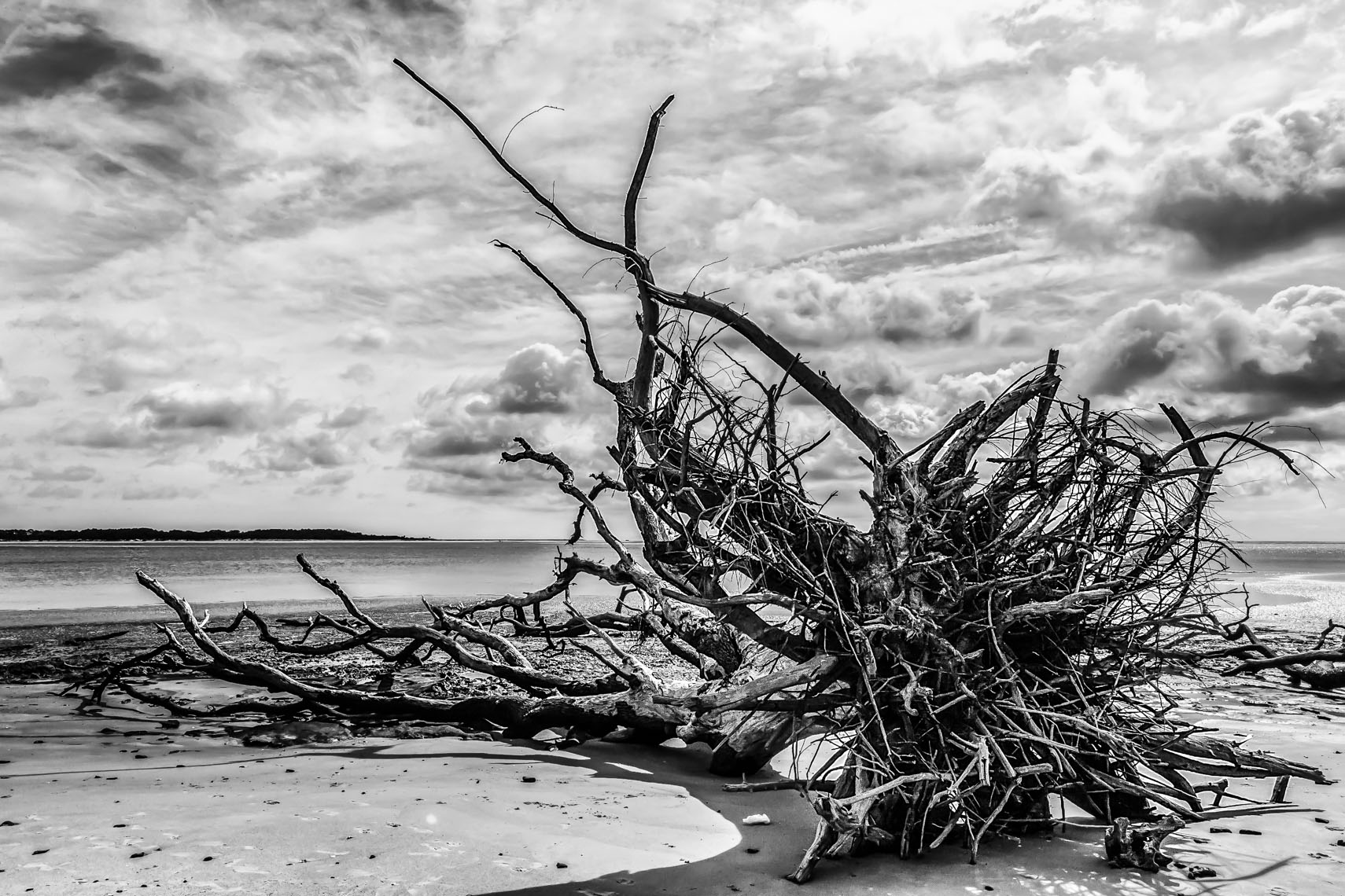 Boneyard Beach, Florida